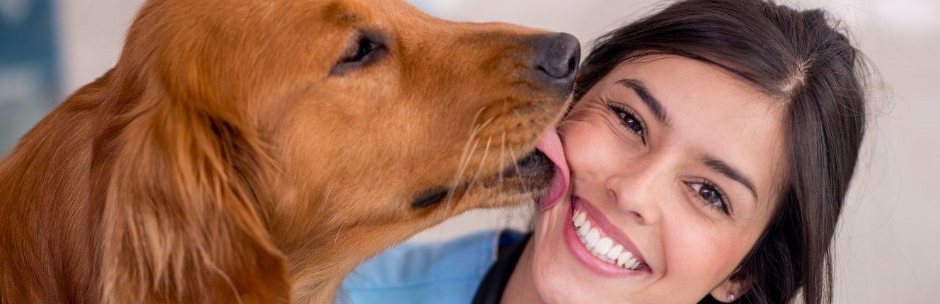 Tierliebe, einfühlsamer Tierarzt